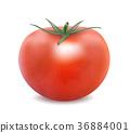 西紅柿 番茄 飲食 36884001
