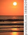 Sea of sunset 36886204