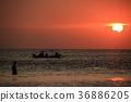 Sea of sunset 36886205