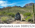 jeep car in baja california landscape panorama  36891524