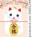 招財貓 祈禱能通過入學考試 通過 36892299