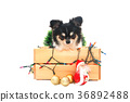Dog with christmas decoration. 36892488