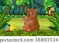 adorable, animal, bear 36893534