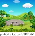 綠色 綠 山峰 36893561