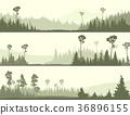 banner, glade, coniferous 36896155