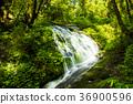 Rainforest waterfall in deep jungle 36900596