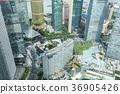 고층 빌딩, 오피스 빌딩, 오피스 건물 36905426