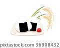 米 新米 食物 36908432