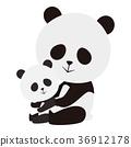 熊貓 大熊貓 動物 36912178