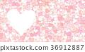 多彩 美丽 漂亮 36912887