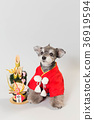dog, dogs, new year's pine decoration 36919594