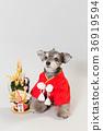 狗 狗狗 新年的圣诞树装饰 36919594