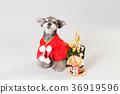 狗 狗狗 新年的圣诞树装饰 36919596