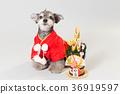 狗 狗狗 新年的圣诞树装饰 36919597