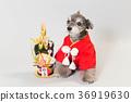 狗 狗狗 新年的圣诞树装饰 36919630