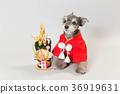 狗 狗狗 新年的圣诞树装饰 36919631