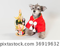 狗 狗狗 新年的圣诞树装饰 36919632