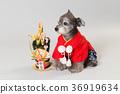 狗 狗狗 新年的圣诞树装饰 36919634
