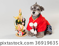 dog, dogs, new year's pine decoration 36919635
