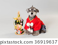 dog, dogs, new year's pine decoration 36919637