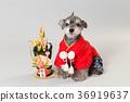 狗 狗狗 新年的圣诞树装饰 36919637