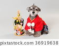 dog, dogs, new year's pine decoration 36919638