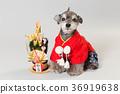 狗 狗狗 新年的圣诞树装饰 36919638