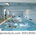 swimming lessons  with a coach 36919685