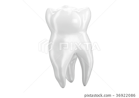 Human Tooth closeup, 3D rendering 36922086