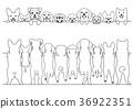 สัตว์,ภาพวาดมือ สัตว์,สัตว์เลี้ยง 36922351