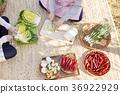 韓國泡菜 泡菜 坐在 36922929