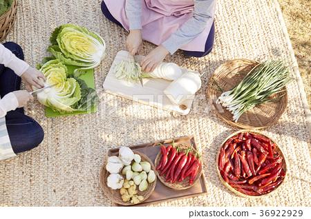 成年人,婦女,泡菜,泡菜,生活 36922929