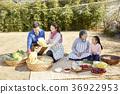가족, 김장, 김치 36922953