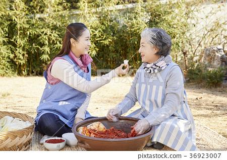 어른,여자,김치,김장,생활 36923007