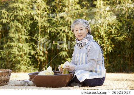 김장,노인,여자,한국 36923017