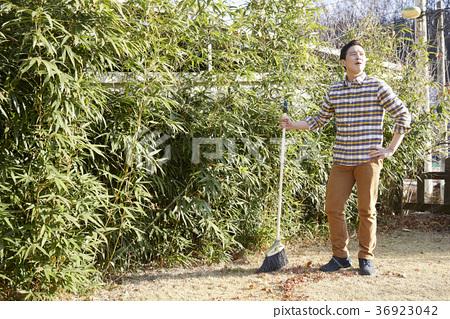 晚年,男人,領域,蔬菜,收穫,韓國 36923042