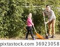 감정, 나무, 농업 36923058
