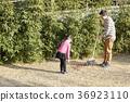 낙엽, 딸, 아빠 36923110