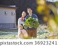 아빠,엄마,딸,가족,시골,생활 36923241