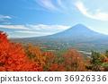 ภูเขาฟูจิ,ภูเขาไฟฟูจิ,ท้องฟ้าเป็นสีฟ้า 36926336