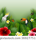 Tropical plants and birds collection set 36927751