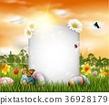 Easter eggs with blank sign 36928179
