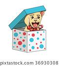 Happy New Year Labrador Retriever Puppy Present 36930308