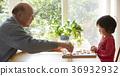senior, grandad, grandpa 36932932