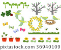 spring, sprouting, sprout 36940109