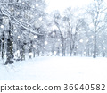 Winter  snowfall landscape. Snowy park. 36940582