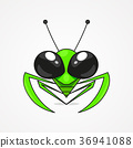 Mantis vector illustration 36941088