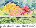 watercolor painting of wild himalayan cherry. 36949645