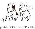 เฟร์นช์บูลล์ดอก,สุนัข,สุนัช 36952232