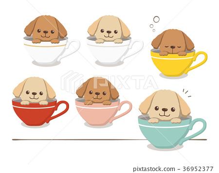 贵宾犬的插图 36952377